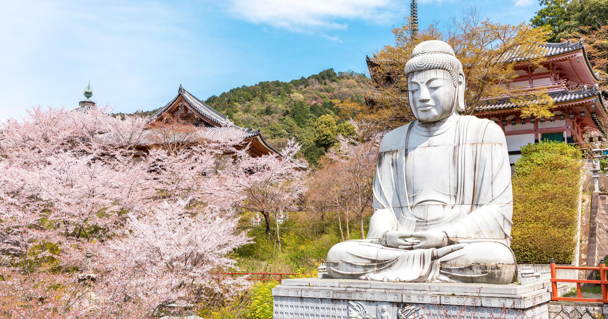 仏教の知識を身につけると、仏画・仏像鑑賞が一層楽しめます。